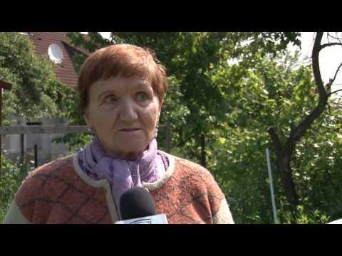 Fókuszban / TV Szentendre / 2016.06.02.