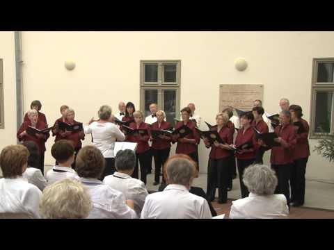 TV Szentendre /  Kóruskoncert a Pajor-kúriában - Musica Beata Kórus 2. rész / 2015.09.23.