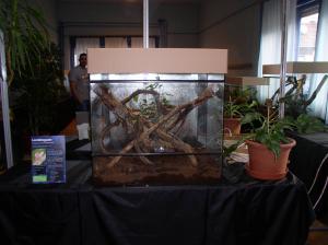 Áprilisban nyílik a Hüllőház és Akvárium