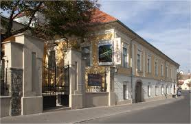 Átvizsgálja az önkormányzat a Ferenczy Múzeum működését