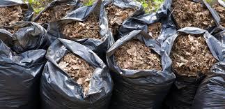 Elkezdődhet a készülődés a kerti zöldhulladék begyűjtésére